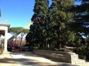 Coordinacion de seguridad y salud Patrimonio Nacional Servicio de jardines y montes